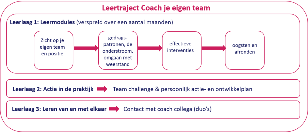 teamcoaching, team coaching, teamontwikkeling, samenwerking in teams, coachend leidinggeven, zelfsturende teams
